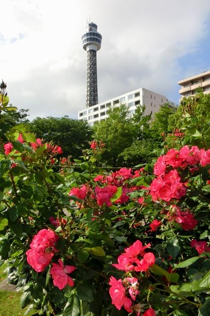 アンジェラと横浜マリンタワー