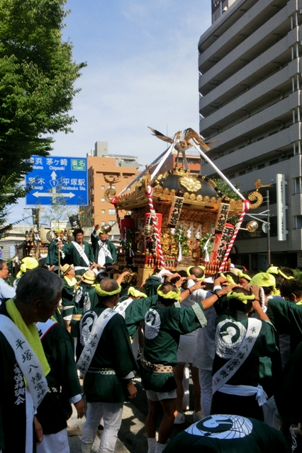 平塚八幡宮 例大祭 お神輿