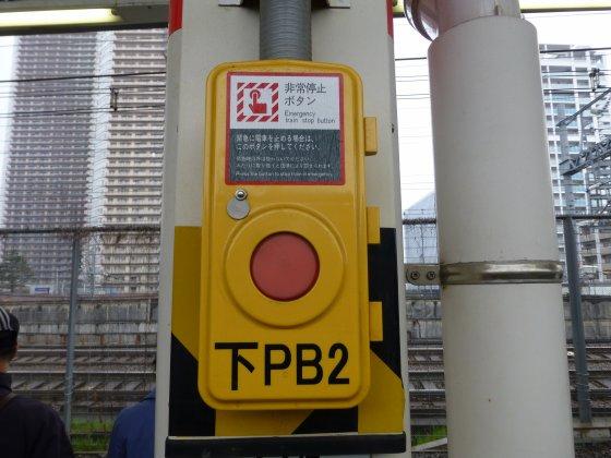 P1080995.jpg