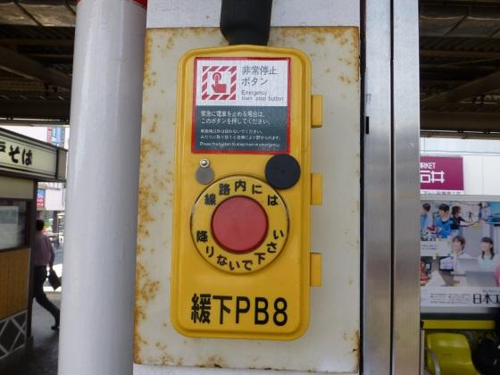 P1110131.jpg