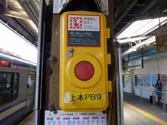P1120049.jpg