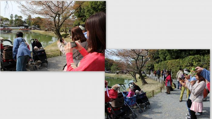 2014-04-081_convert_20140422003333.jpg