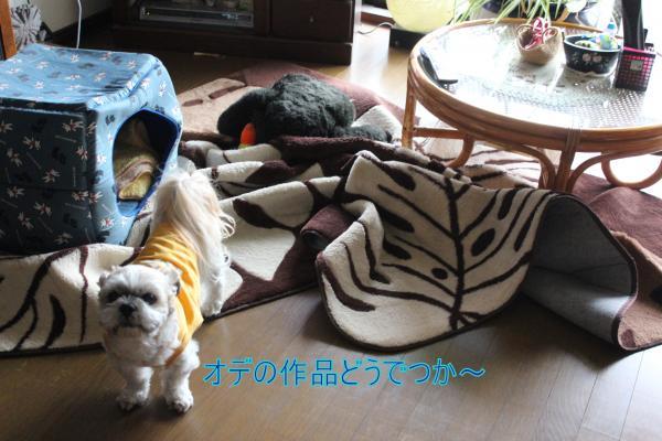 ・搾シ蝕MG_0839_convert_20140502234950