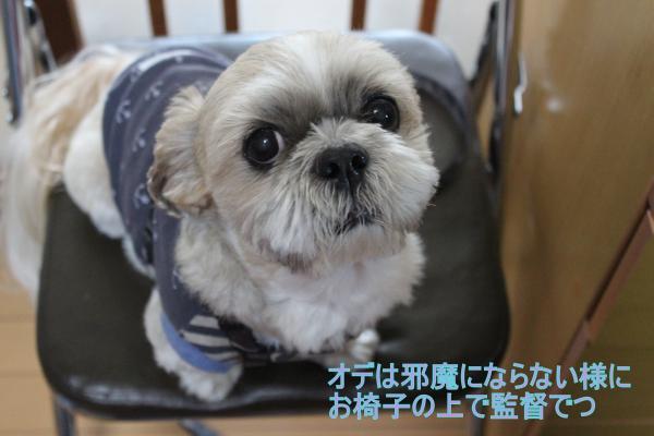 ・搾シ蝕MG_0686_convert_20140504231204