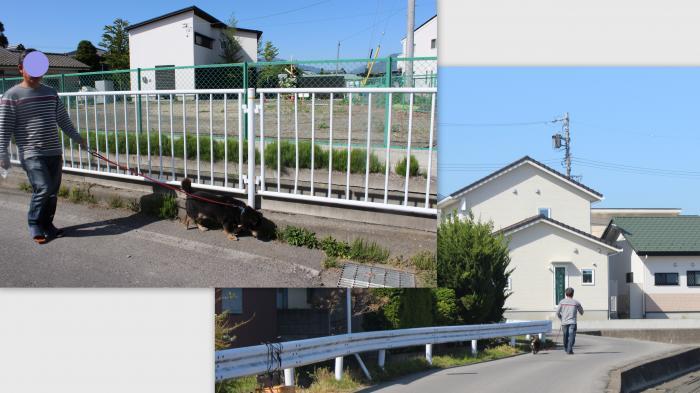 ・搾シ・014-05-19_convert_20140601235431
