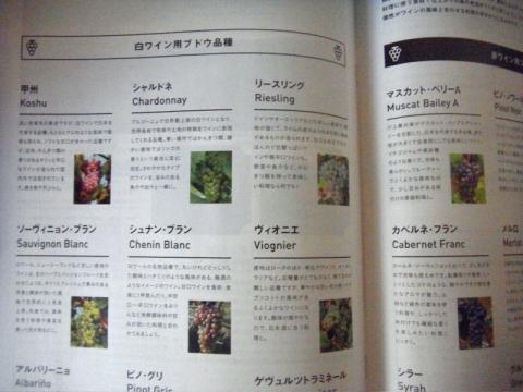 和食とワインの相性を「メトロミニッツ」で