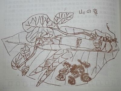 鈴木4734