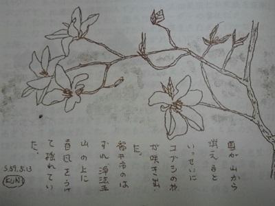 鈴木4735