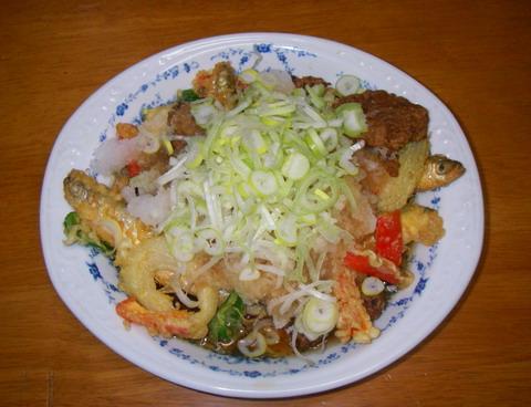 チカ&野菜みぞれ揚げ風縮小版.jpg