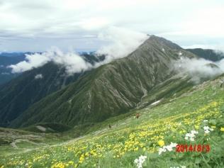 お花畑から赤石岳+-CIMG0836_convert_20140805221720