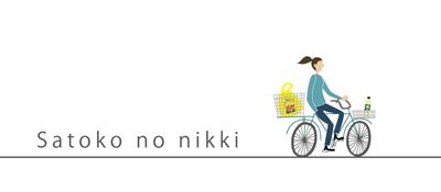 banner_nikki2.png