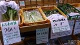 錦秋湖(山菜)