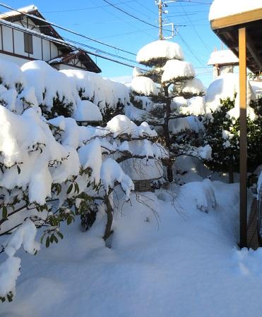 017大雪の朝