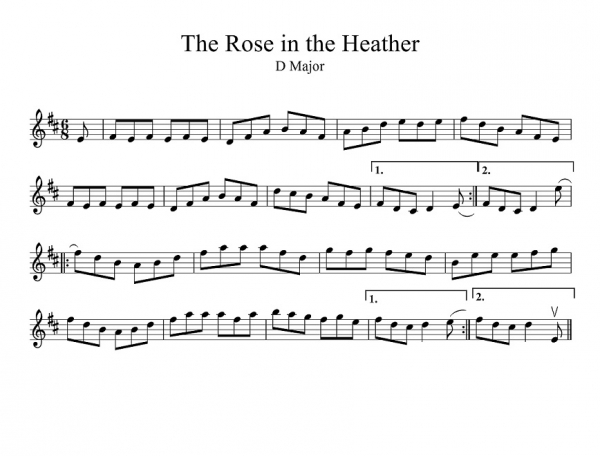 rose in the heather(bowing)-1