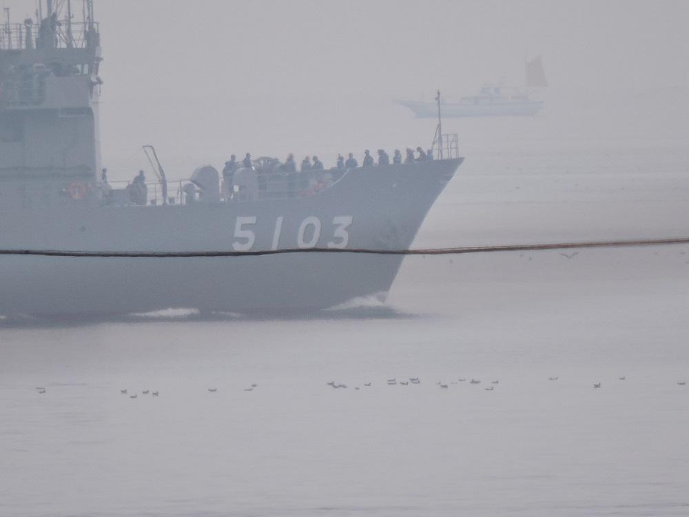 su-4.jpg