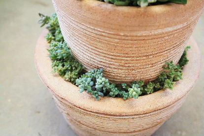 素焼き2段重ねの寄せ植え