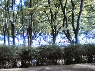夏祭り 002