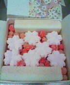 さくらの京菓子司への道-2013032815530000.jpg