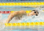 20140411swimming萩野