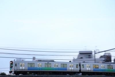 5D3A1163.jpg