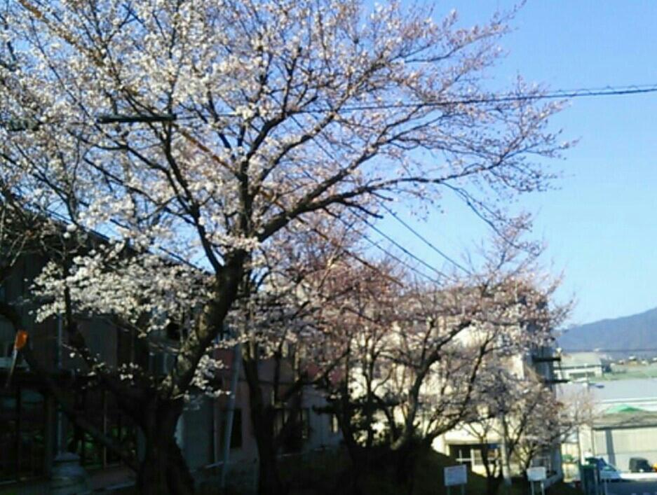 fc2_2014-03-29_22-15-13-779.jpg