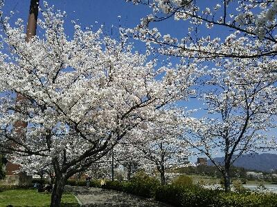 fc2_2014-04-13_18-32-14-950.jpg