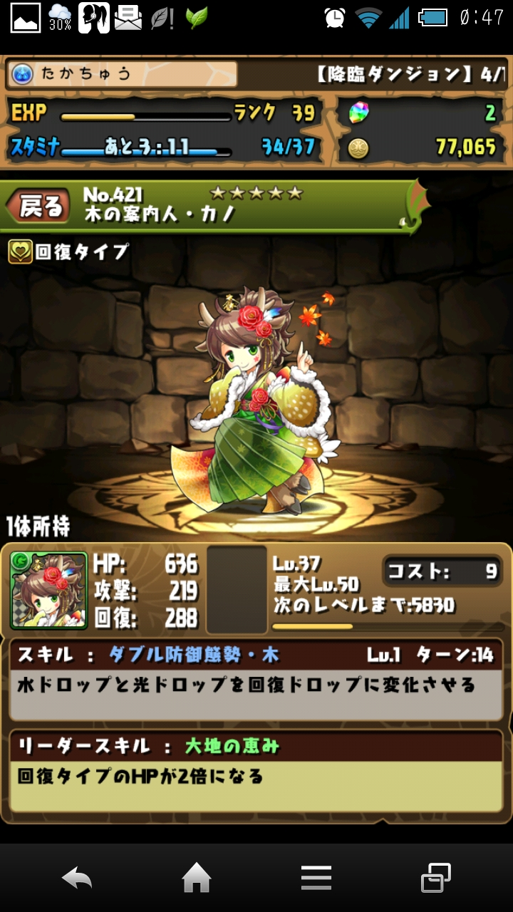 (140420) パズドラ-木の案内人・カノ