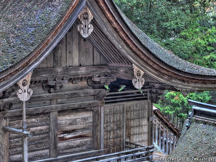 武田八幡神社本殿