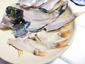 近所の磯防波堤で初の海釣り~♪何と奥の黒い魚~メジナ(15cmくらい)手前赤い魚~ネンブツタイ釣れました~♪うそみタ~イ\(^o^)/自分でおろして刺身で食べちゃいました♪コリコリ~うまうま~♪夢の様~うそみタ~