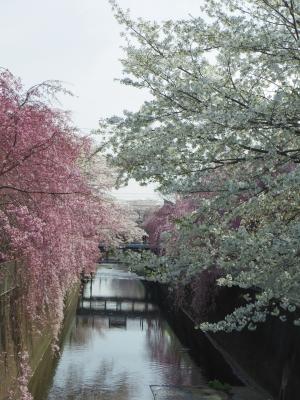 2014-04-02-touwa-02.jpg