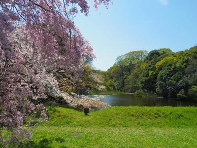 2014-04-07-kokyo.jpg
