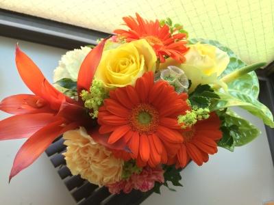 2014-05-17-flower.jpg