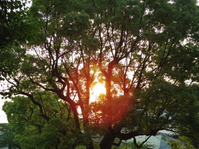 2014-05-19-sinrise-02.jpg