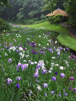 2014-06-12-hanashobu-02.jpg