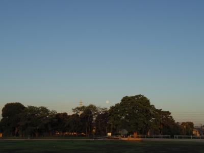 2014-06-14-moonset.jpg