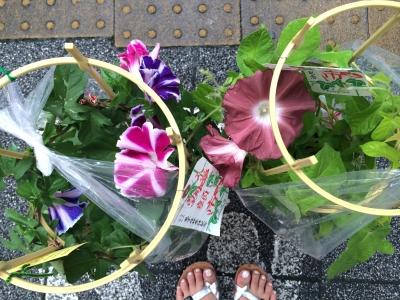 2014-07-07-asagao-05.jpg