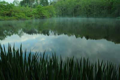 新緑の竜神池 (3)