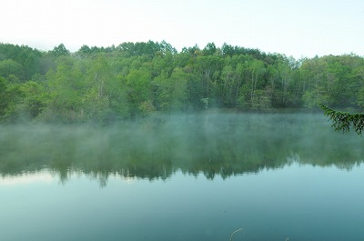 新緑の竜神池 (1)