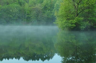 新緑の竜神池 (2)