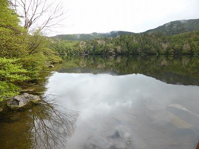 白駒の池20140608 (8)