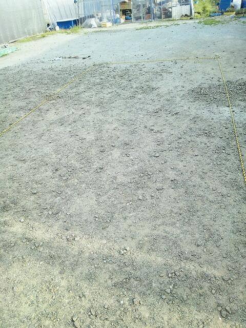 いちご農園トラロープ2