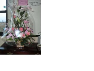 2月の花」