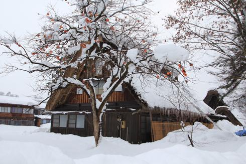 白川郷2013冬-14