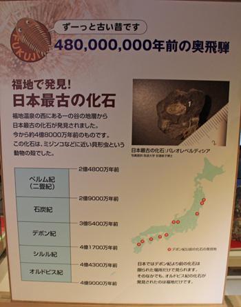 福地化石館-6