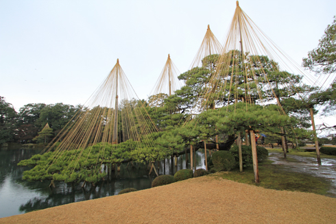 兼六園2013-6