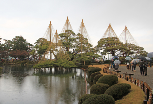 兼六園2013-8