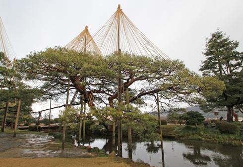 兼六園2013-11
