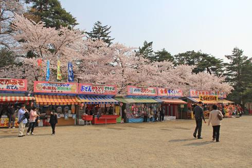 弘前桜祭り2014(1)-3