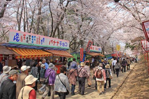 弘前桜祭り2014(1)-4