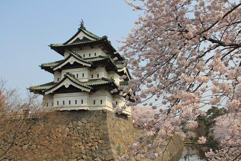 弘前桜祭り2014(1)-8